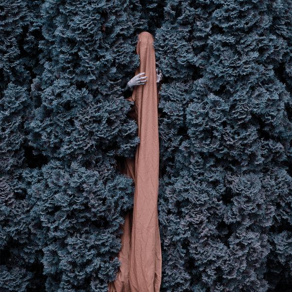 Vagrond - Ruin Titelbild